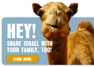 Image of a Camel in Israel