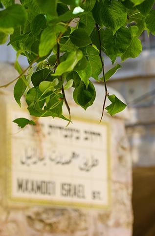 Discovering Ancient JERUSALEM